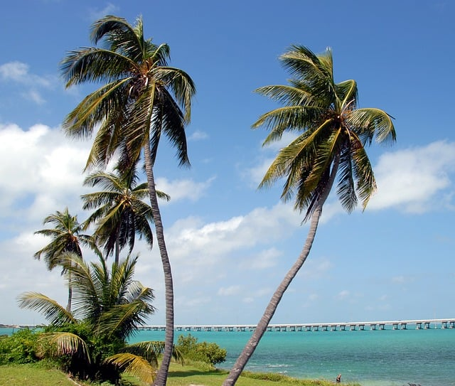 Palm Cottages - Great Location
